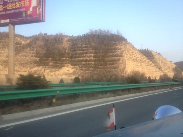 Hier ist das Land ganz karg. Es gibt wirklich gar nichts. Kein Wasser, nie Regen. Die Chinesen haben ordentlich in Reihen Bäume angepflanzt .