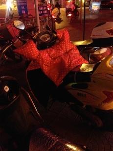 Alle Rollerfahrerinnen haben diese hübschen Deckchen, wo sie die Hände reinstecken, damit sie warm sind