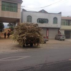 Solche beladenen Fahrzeuge hat man auf der Landstraße vor sich und die können ihre Richtungsänderung nicht anzeigen.