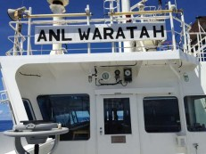 Von der Brückennock der Waratah hat man einen Überblick über 1.000de von Containern, teilweise tiefgekühlt. Z.B. neben Hudo sind Blaubeeren bei -20° von einer Frau Wulff